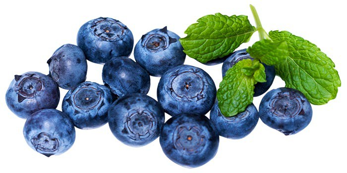 Blueberry-copy